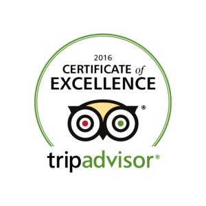 Trip Advisor 2016 Logo